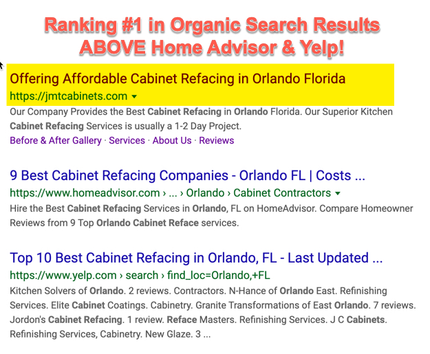 Google Organic Search Results